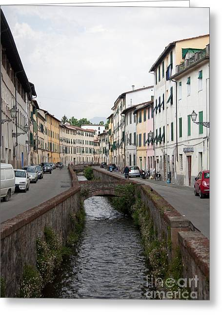 Steven Gray Greeting Cards - Lucca Greeting Card by Steven Gray