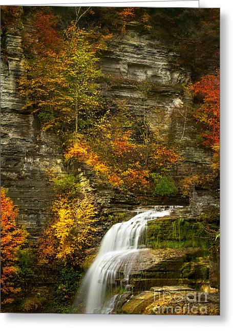 Lucifer Falls Greeting Card by Todd Bielby