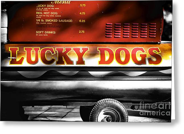 Lucky Dogs Greeting Cards - Lucky Dogs Fusion Greeting Card by John Rizzuto