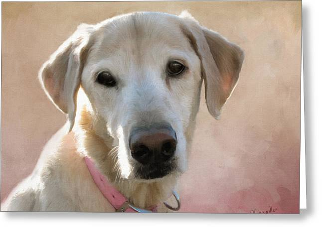 Recently Sold -  - Puppies Digital Greeting Cards - Lucy in Pink Greeting Card by Diane Chandler