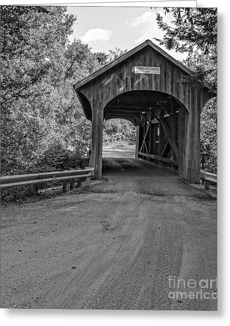 Covered Bridge Greeting Cards - Lumber Mill Bridge Belvidere Vermont Greeting Card by Edward Fielding