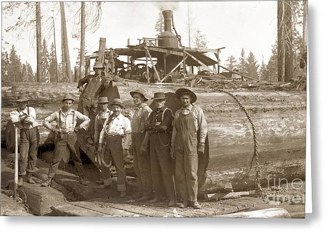 lumberjacks next to Redwood longs with a Steam Donkey Greeting Card by California Views Mr Pat Hathaway Archives