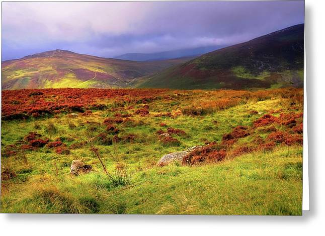 Luminescent Light Over Wicklow Hills Greeting Card by Jenny Rainbow