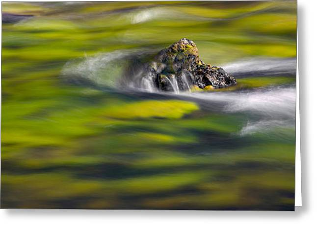 Beautiful Creek Greeting Cards - Luminous River Panoramic 1 Greeting Card by Leland D Howard