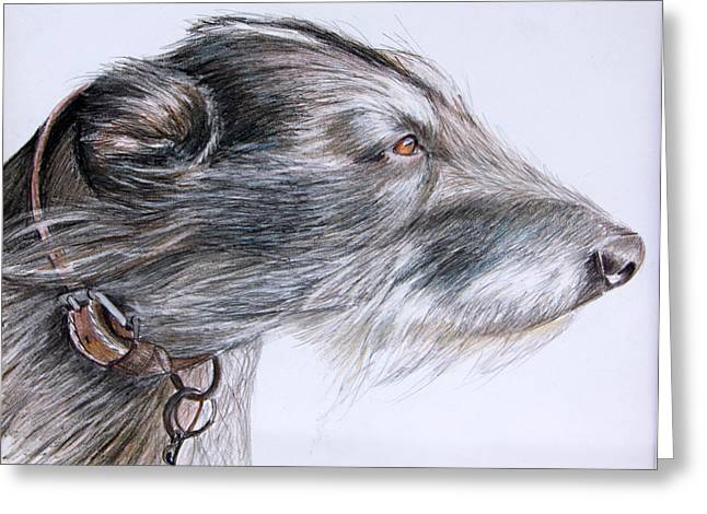Mary Mayes Greeting Cards - Lurcher Greeting Card by Mary Mayes
