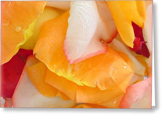 Tangerine Greeting Cards - Luscious Greeting Card by Kathy Bucari