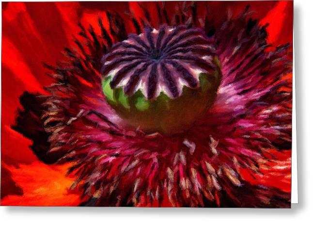 Luscious Red Poppy Art Greeting Card by Georgiana Romanovna