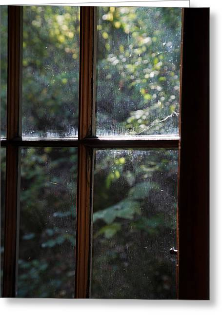 Cabin Window Greeting Cards - Lush Cabin View Greeting Card by MaJoR  Images