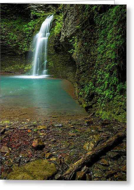 Richland Creek Wilderness Greeting Cards - Lush Waterfall Greeting Card by Damon Shaw
