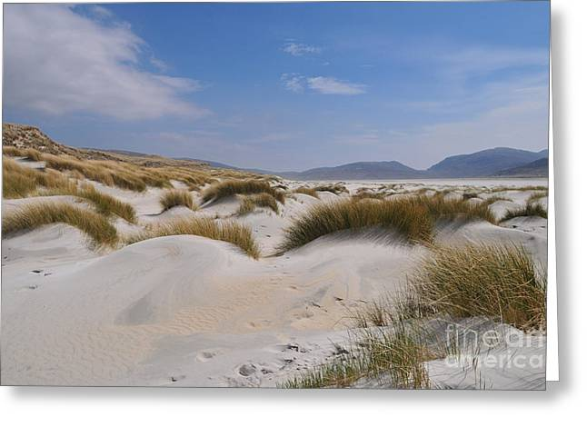 Luskentyre Sand Dunes Greeting Card by Stephen Smith
