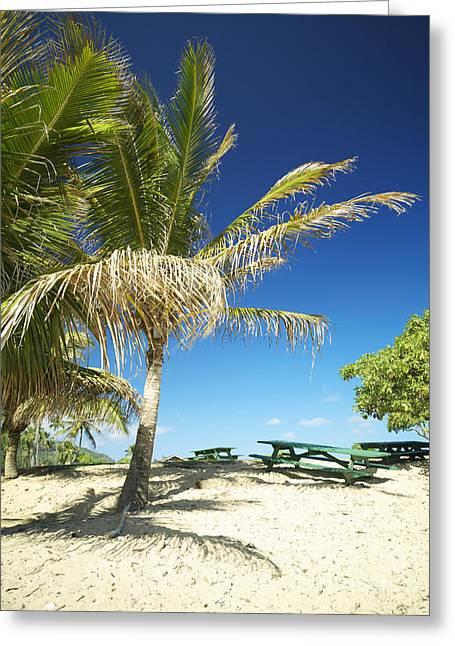 Lydgate Beach On Kauai Greeting Card by Kicka Witte - Printscapes