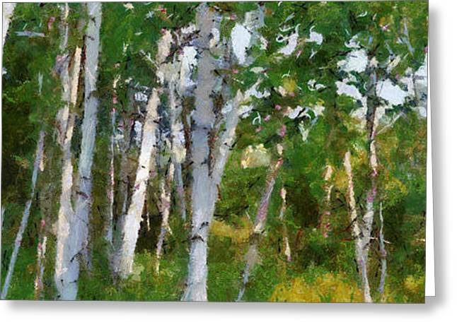 Best Seller Greeting Cards - M-22 Birches Greeting Card by Michelle Calkins