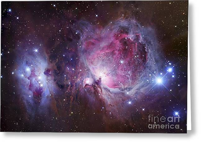 Interstellar Clouds Greeting Cards - M42, The Orion Nebula Top, And Ngc Greeting Card by Robert Gendler