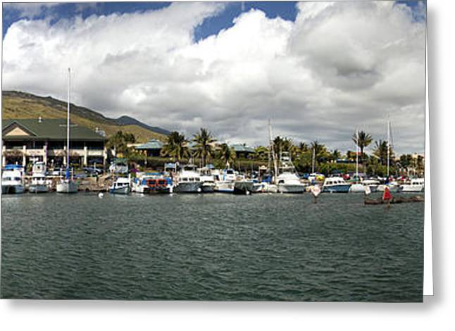 Dave Greeting Cards - Maalaea Boat Harbor Greeting Card by Dave Fleetham - Printscapes