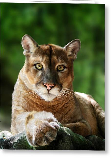 """wild Cat"" Greeting Cards - Mac Greeting Card by Big Cat Rescue"