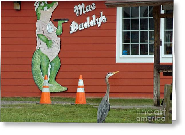 Mountain Road Greeting Cards - Mac Daddys Greeting Card by Skip Willits