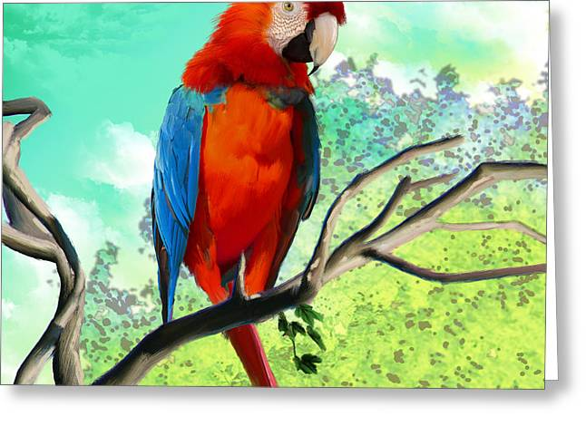 Cut-outs Greeting Cards - Macaw Bird Greeting Card by Lee Went