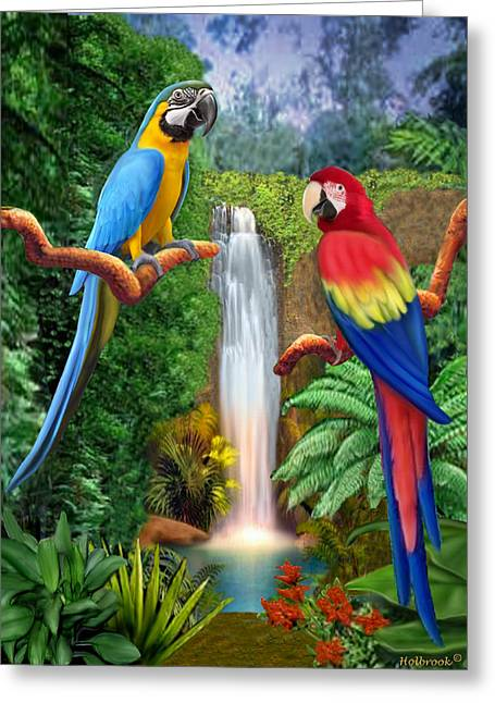 Print On Canvas Greeting Cards - Macaw Tropical Parrots Greeting Card by Glenn Holbrook
