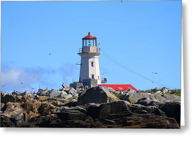 Machias Seal Island Greeting Cards - Machias Seal Island Lighthouse Greeting Card by John Burk