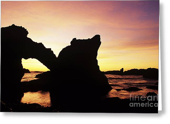 Solid State Greeting Cards - MacKerricher Arch Greeting Card by Greg Vaughn - Printscapes