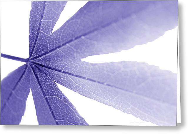 Translucent Light Greeting Cards - Macro Leaf Purple Greeting Card by Jennie Marie Schell