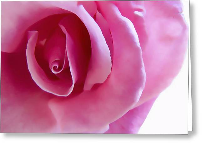 Single Mixed Media Greeting Cards - Macro Pink Greeting Card by Robert OP Parrish
