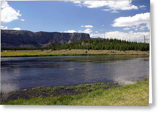 Madison River Valley Greeting Card by Marty Koch