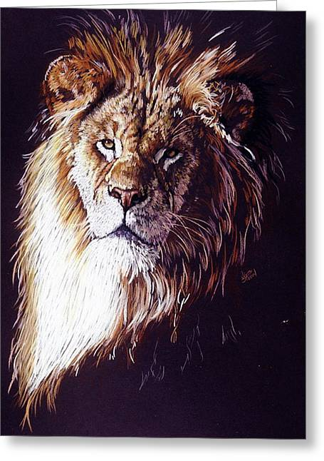 Lion Greeting Cards - Maestro Greeting Card by Barbara Keith