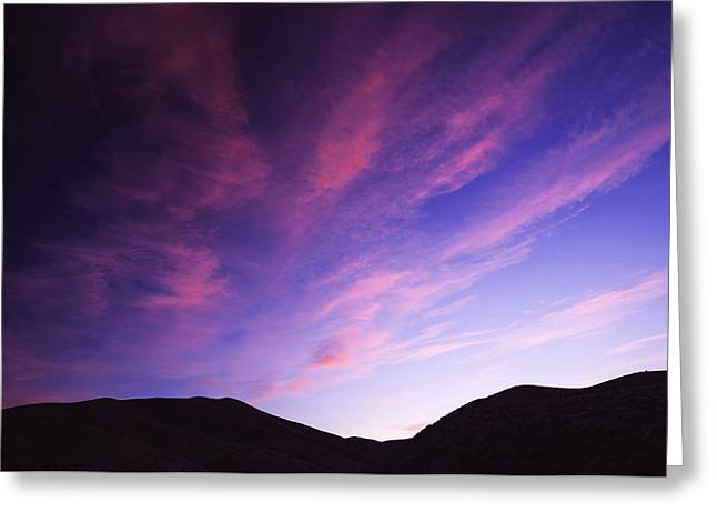 Silhoette Greeting Cards - Magenta explosion in Boise Idaho USA Greeting Card by Vishwanath Bhat