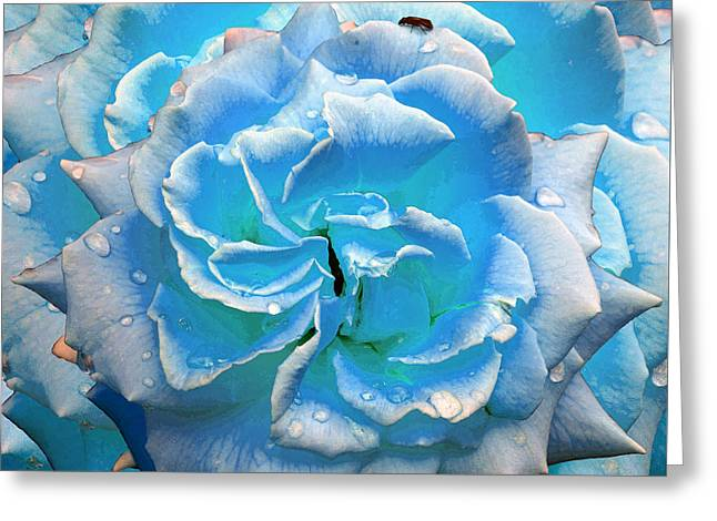 Raining Greeting Cards - Magical Blue Rose with Raindrops Greeting Card by Michele  Avanti