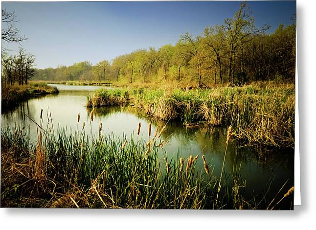 Oklahoma Landscape Greeting Cards - Magical March Morning Greeting Card by Iris Greenwell