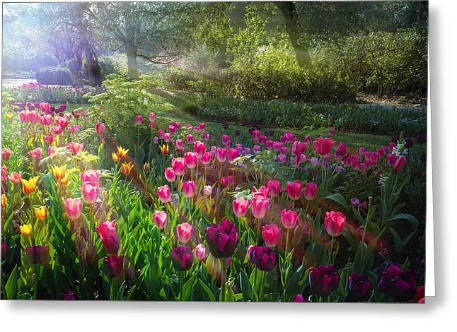 Magical Moment In The Garden Greeting Card by Lynn Bauer
