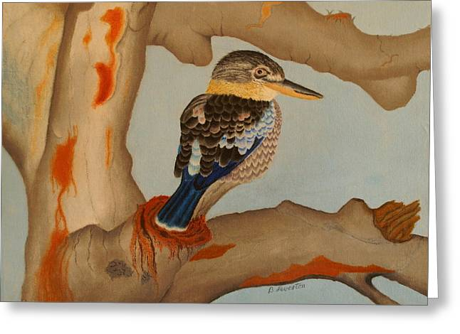 Magnificent blue-winged Kookaburra Greeting Card by Brian Leverton