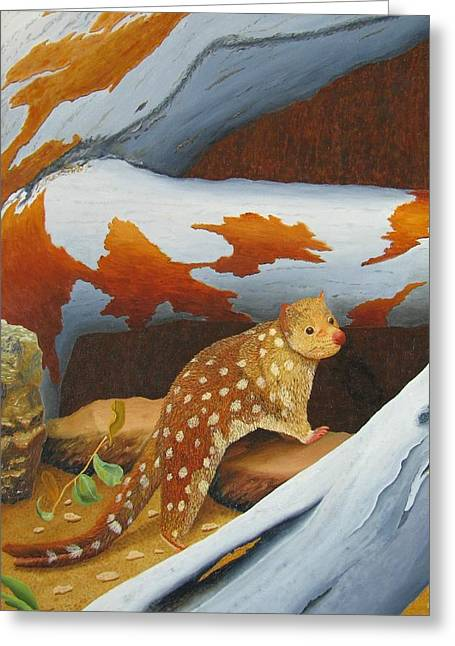 Portrait Greeting Cards - Magnificent Tasmanian spoted Quoll Greeting Card by Brian Leverton