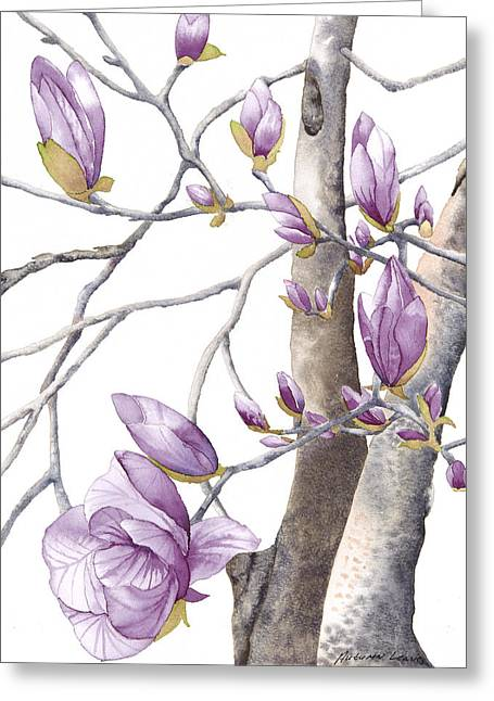 Magnolia Primo Greeting Card by Autumn Leaves