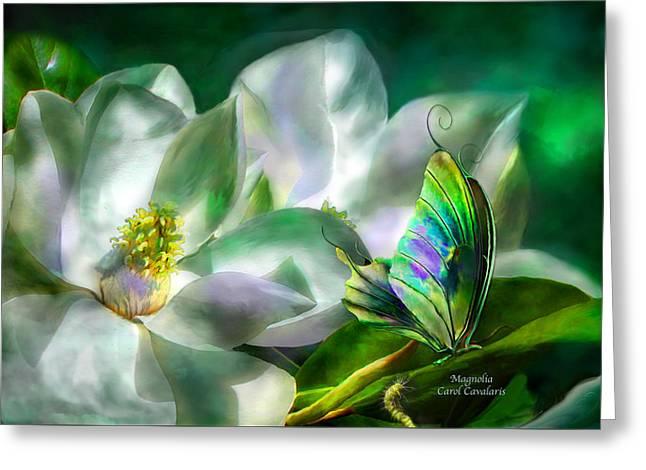 Magnolia Greeting Card by Carol Cavalaris