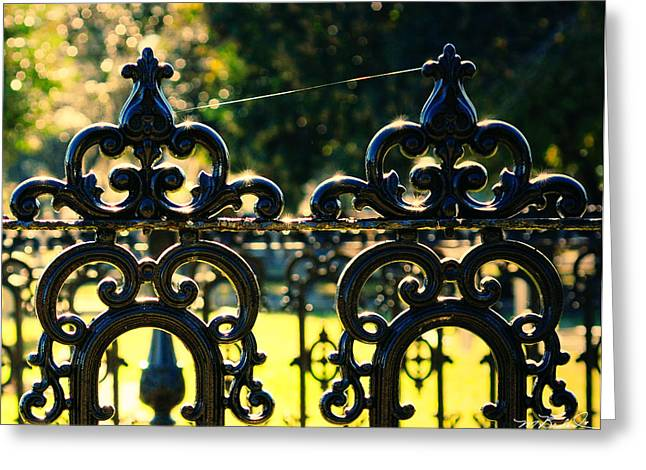 D5000 Greeting Cards - Magnolia Cemetery 644 Greeting Card by Melissa Wyatt