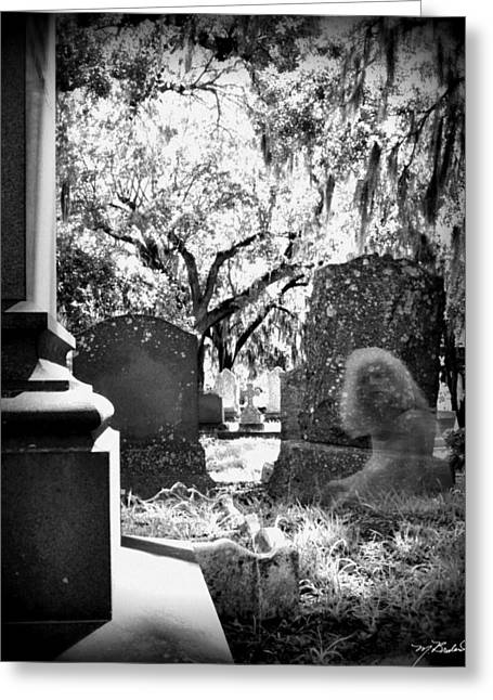 D5000 Greeting Cards - Magnolia Cemetery 75 Greeting Card by Melissa Wyatt