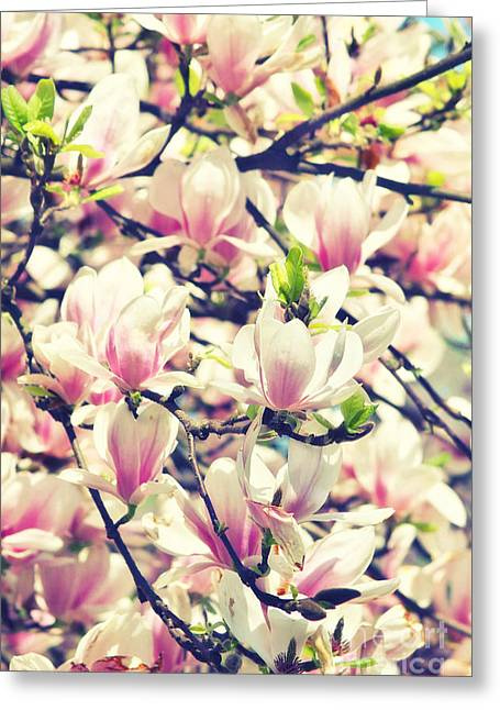 Pink Flower Branch Greeting Cards - Magnolia II Greeting Card by Angela Doelling AD DESIGN Photo and PhotoArt
