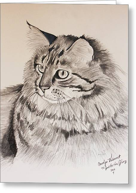Maine Coon Cat Dusty Greeting Card by Carolyn Valcourt