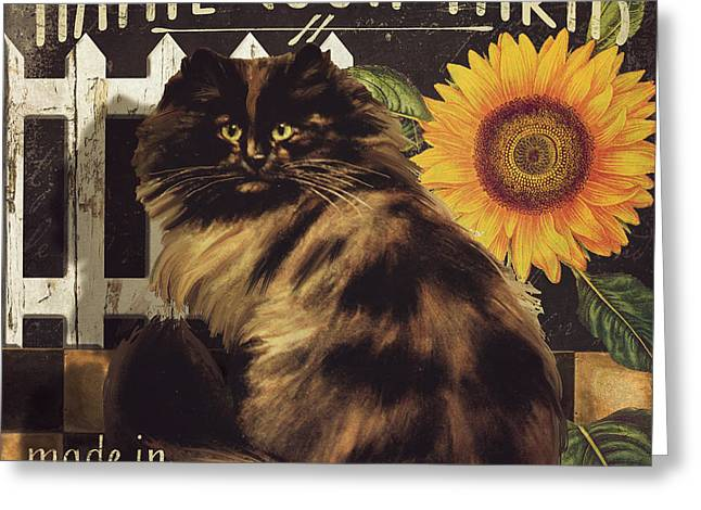 Farm Cat Greeting Cards - Maine Coon Farms Greeting Card by Mindy Sommers