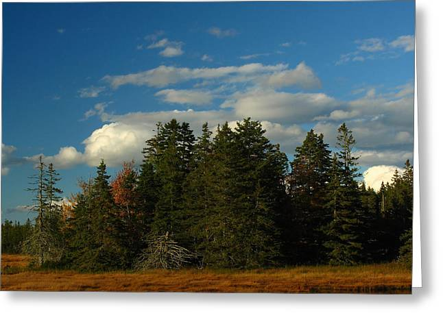 Maine Landscape Greeting Cards - Maine Landscape Photography Greeting Card by Juergen Roth
