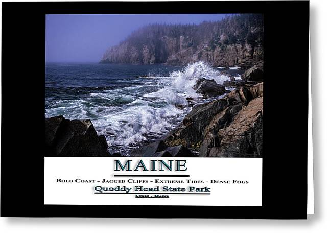 Coastal Maine Greeting Cards - MAINE Quoddy Head State Park Greeting Card by Marty Saccone