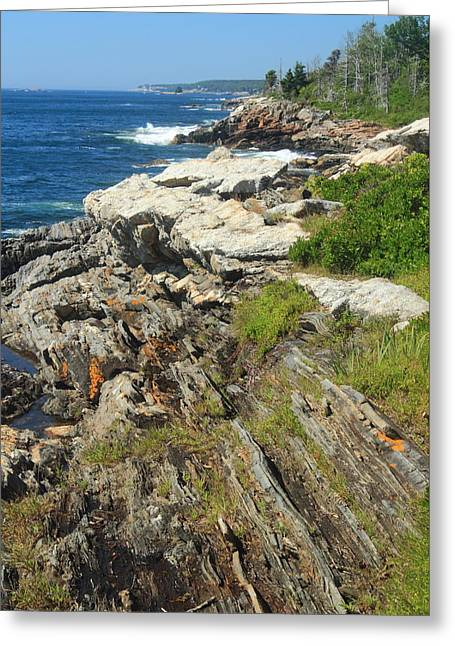 New England Ocean Greeting Cards - Maine Rocky Coast La Verna Preserve Pemaquid Greeting Card by John Burk