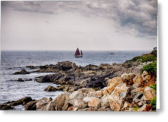 Maine Shore Greeting Cards - Maine Sailing Greeting Card by Tricia Marchlik