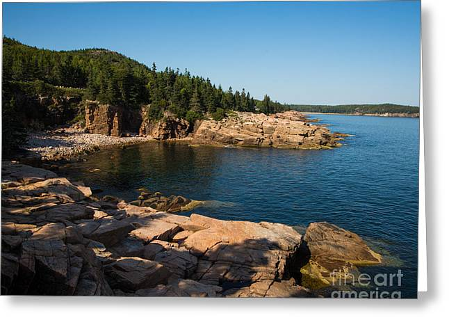 Maine's Acadia Coastline Greeting Card by Flying Turkey