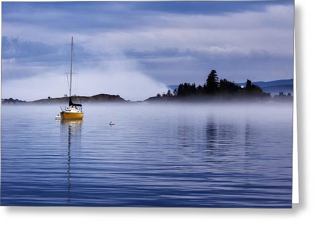 Yellow Sailboats Greeting Cards - Majestic Harbor Greeting Card by John Stocker