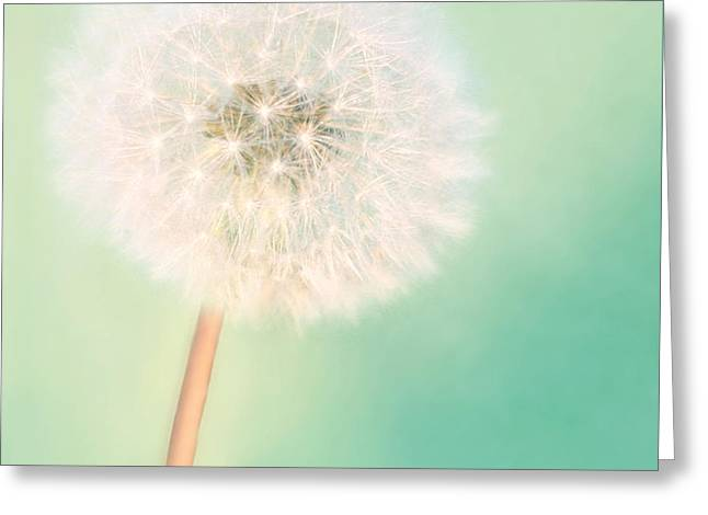 Make A Wish - Square Version Greeting Card by Amy Tyler
