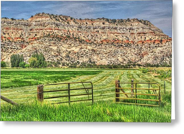 Hayfield Greeting Cards - Make Hay While the Sun Shines Greeting Card by Donna Kennedy