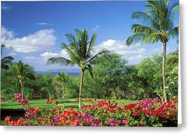 Tropical Golf Course Greeting Cards - Makena Beach Golf Course Greeting Card by Peter French - Printscapes